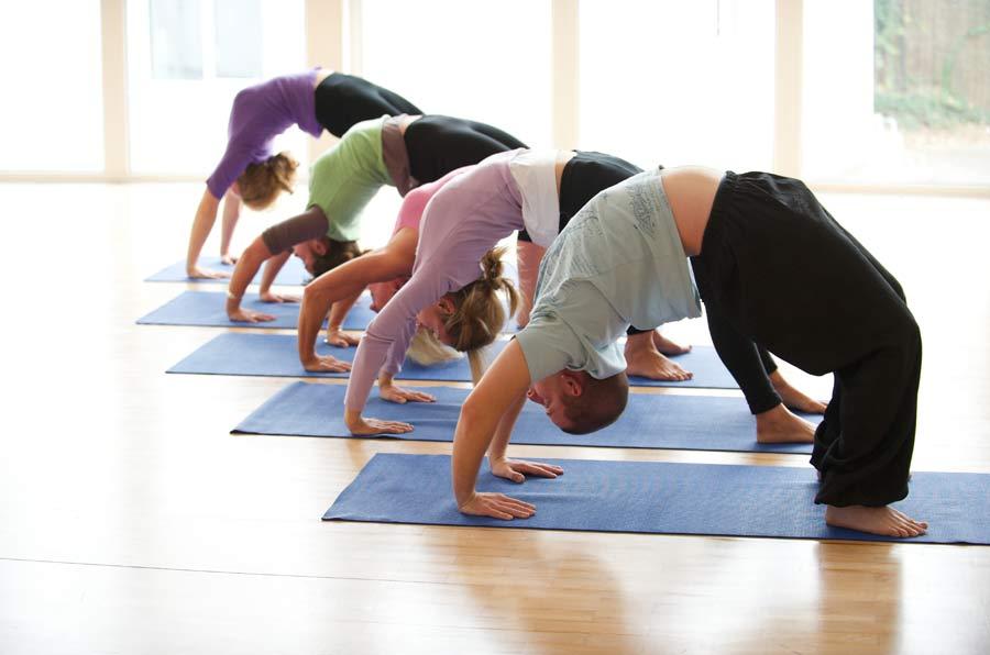 Lsp Yoga 142 051114 044334