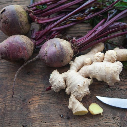 Primrose's Go Organic Tips